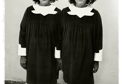 Diane Arbus   Identical Twins, Roselle, New Jersey (1967), 2014