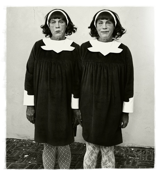 Diane_Arbus___Identical_Twins,_Roselle,_New_Jersey_(1967),_2014.jpg